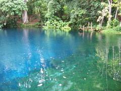 Jackies Blue Hole, Espiritu Santo, Vanuatu