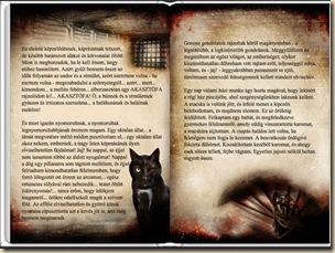 A fekete macska_2