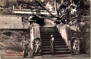 bo-tree-anuradhapura