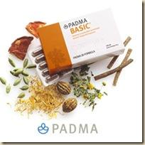 Padma-logo