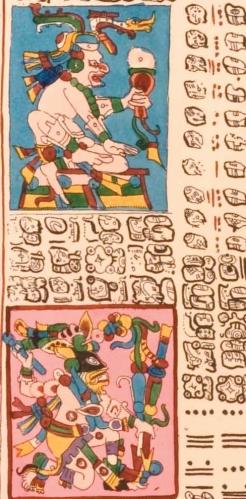 Vénusz tábla részlete a drezdai kódexben