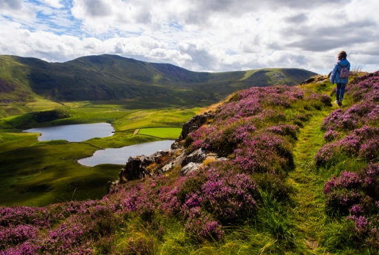 The Cregennan Lakes