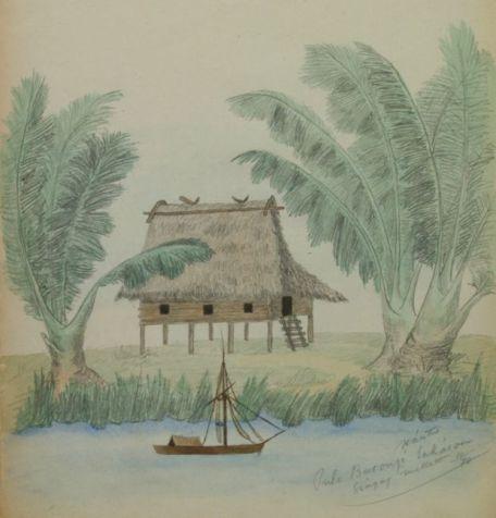 Xántus háza Borneón