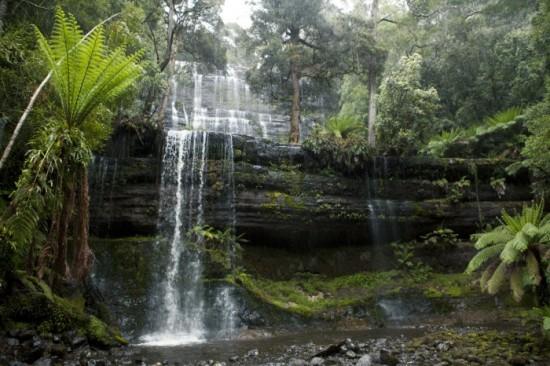 Russel-vízesés Tasmania