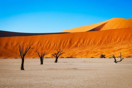 Deadvlei - orange dunes