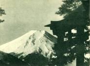 A Fuji hegy és torii kapu
