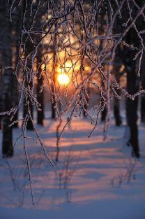 Sunset on the snow