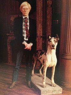 Warhol Cecillel