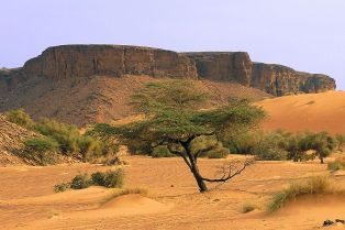 Adrar Plateau
