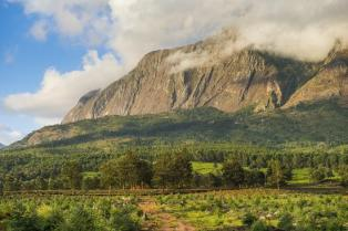Mount Mulanje at sunset in Malawi