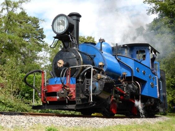 DHR Railway B-19 Locomotive