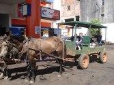 Mennonites in Paraguay