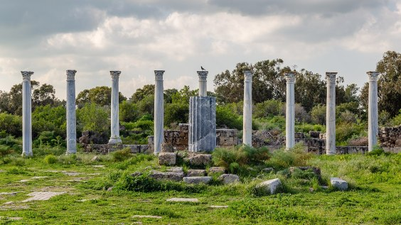 Roman Gymnasium in Salamis (Nothern Cyprus