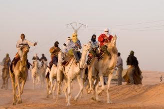 Camel Racing UAE