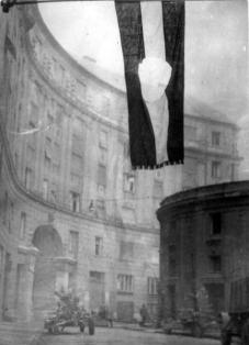1956 revolutionary Hungarian flag