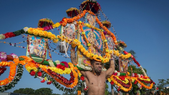 A Hindu devotee with bodies pierced skewed with spikes carries a 2 metre bamboo decked with marigolds, milk and Hindu deities during the annual Hindu Thaipusam Kavady on February 11, 2017 at the Shree Emperumal Hindu Temple some 42 kms north of Durban.  / AFP / RAJESH JANTILAL        (Photo credit should read RAJESH JANTILAL/AFP/Getty Images)