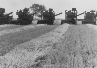 Soviet-made combine harvesters in 1961
