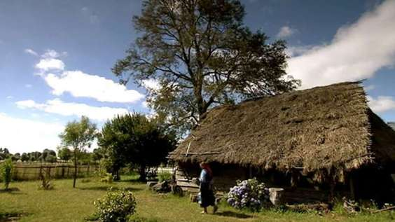 Mapuche culture (Also called the Araucanian Indians after their place of residence