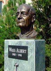 Statue of Albert Wass in Baja