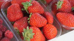 Strawberries at Ljubljana Central Market