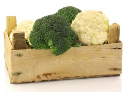Summer vegetables in the kitchen